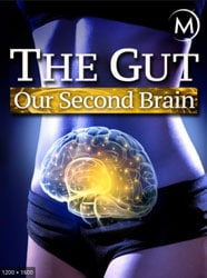 The Gut Our Second Brain Movie